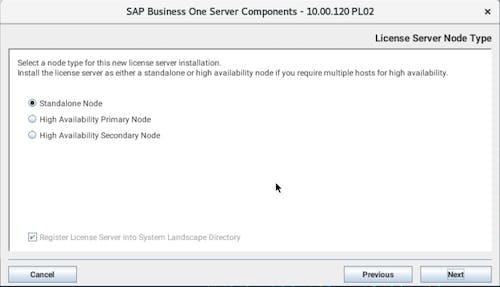 Install SAP B1 - 11