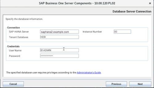 Install SAP B1 - 12