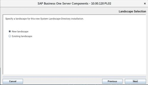 Install SAP B1 - 6