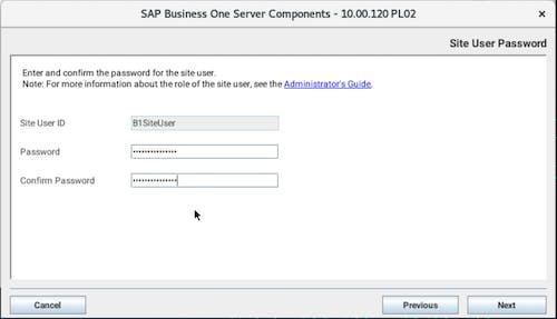 Install SAP B1 - 7