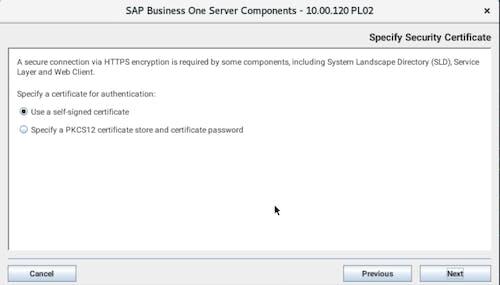 Install SAP B1 - 8
